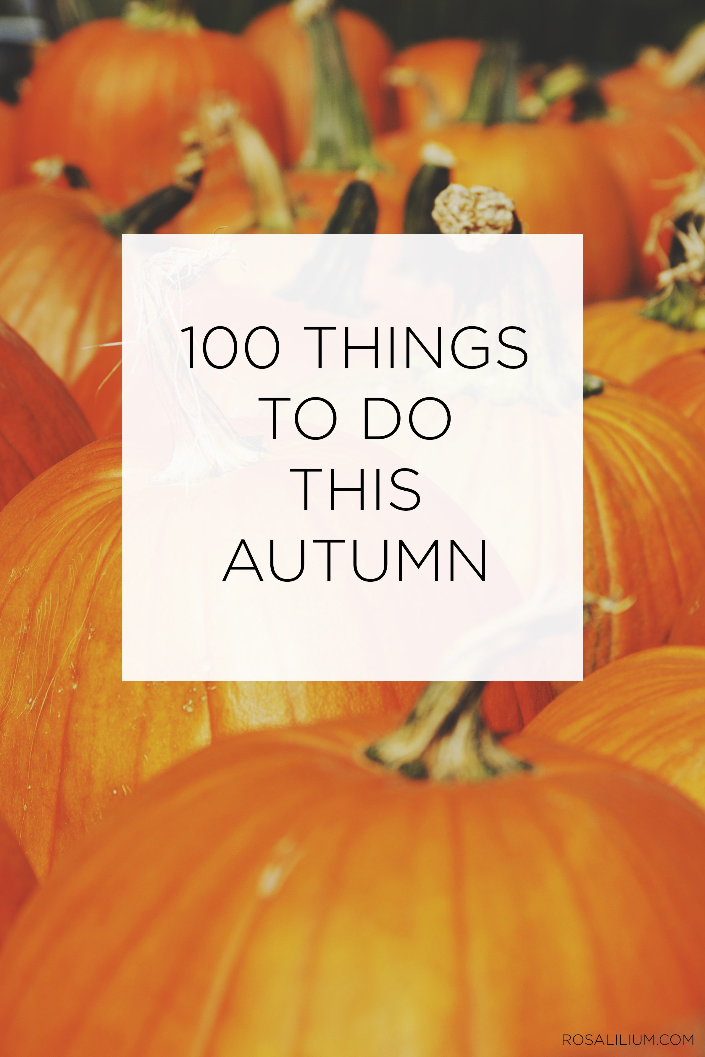100 Things To Do This Autumn