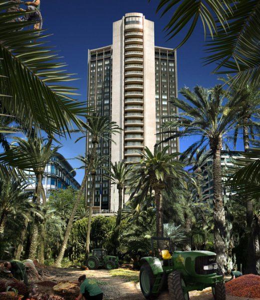 London-Futures-Hyde-Park-Palm-Oil