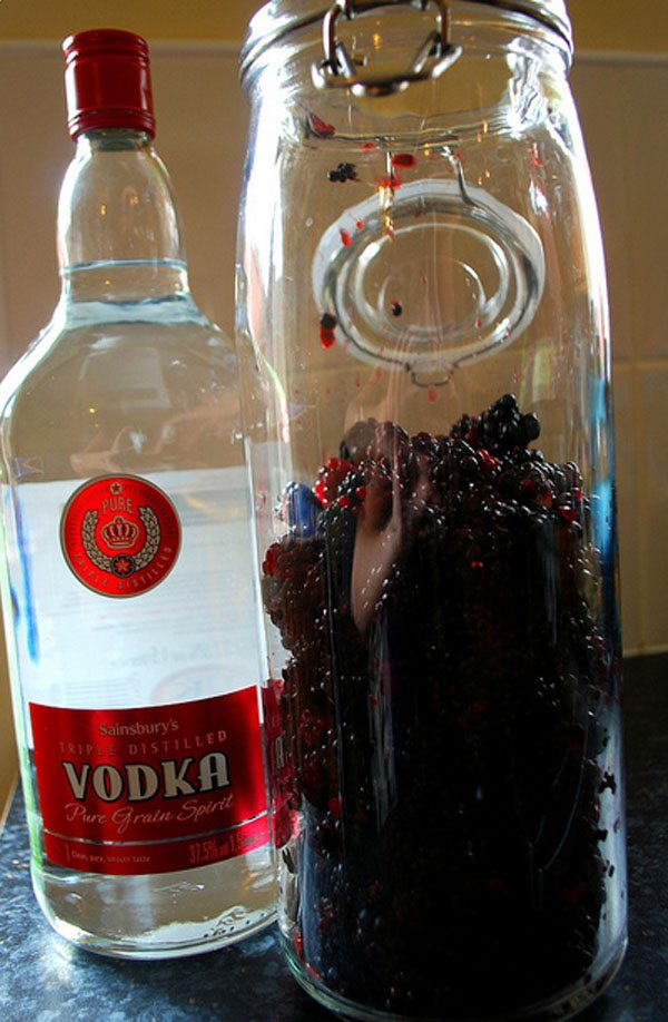 Blackberry and Vodka