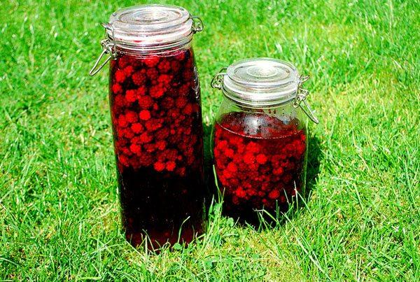 How to Make Blackberry Vodka