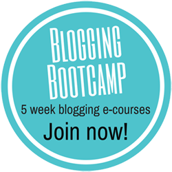Blogging Bootcamp 250