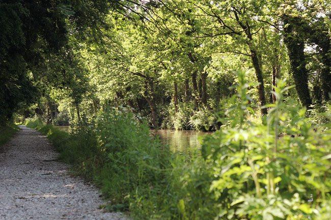 Warwickshire Ring Canal