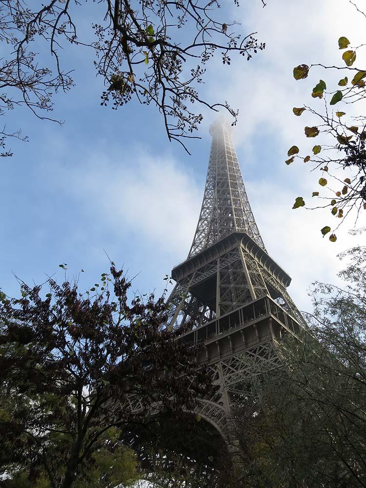 eiffel tower rosalilium