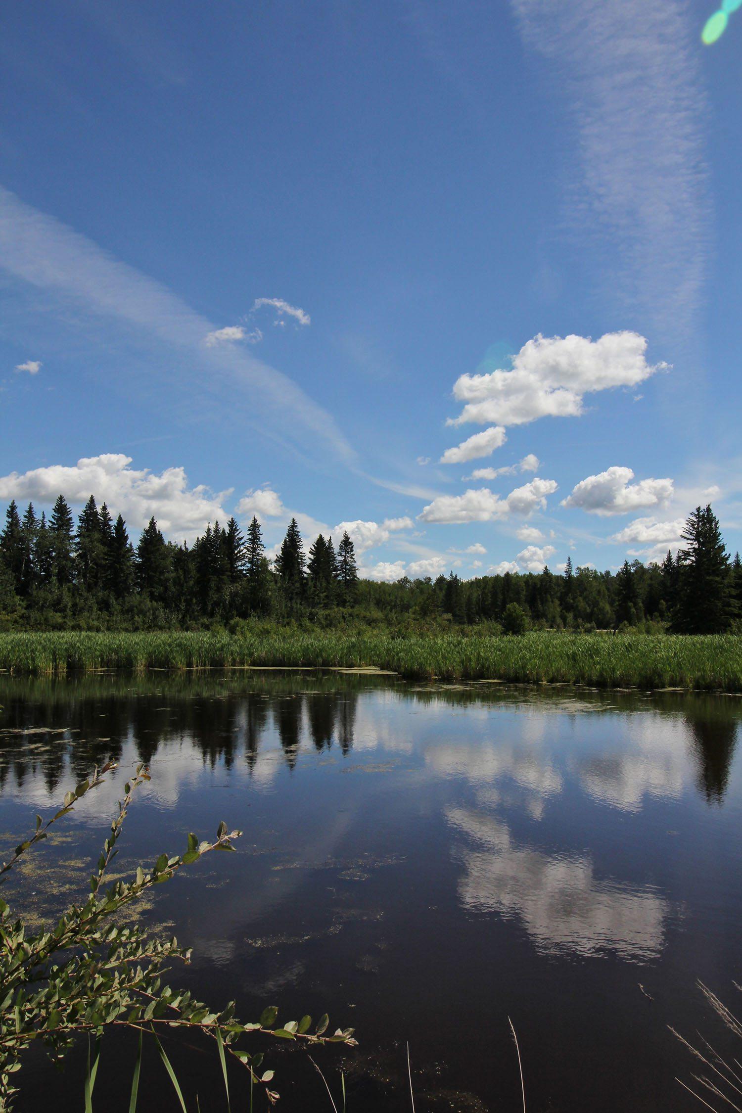 Elk Island Edmonton