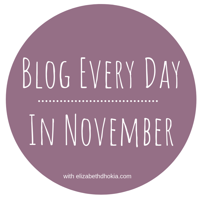 Blog Every Day in November with elizabeth dhokia