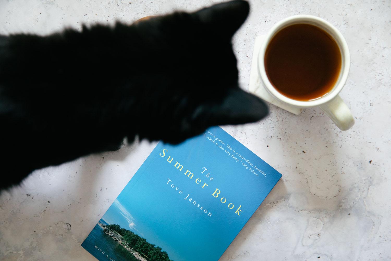 Cat Book Tea