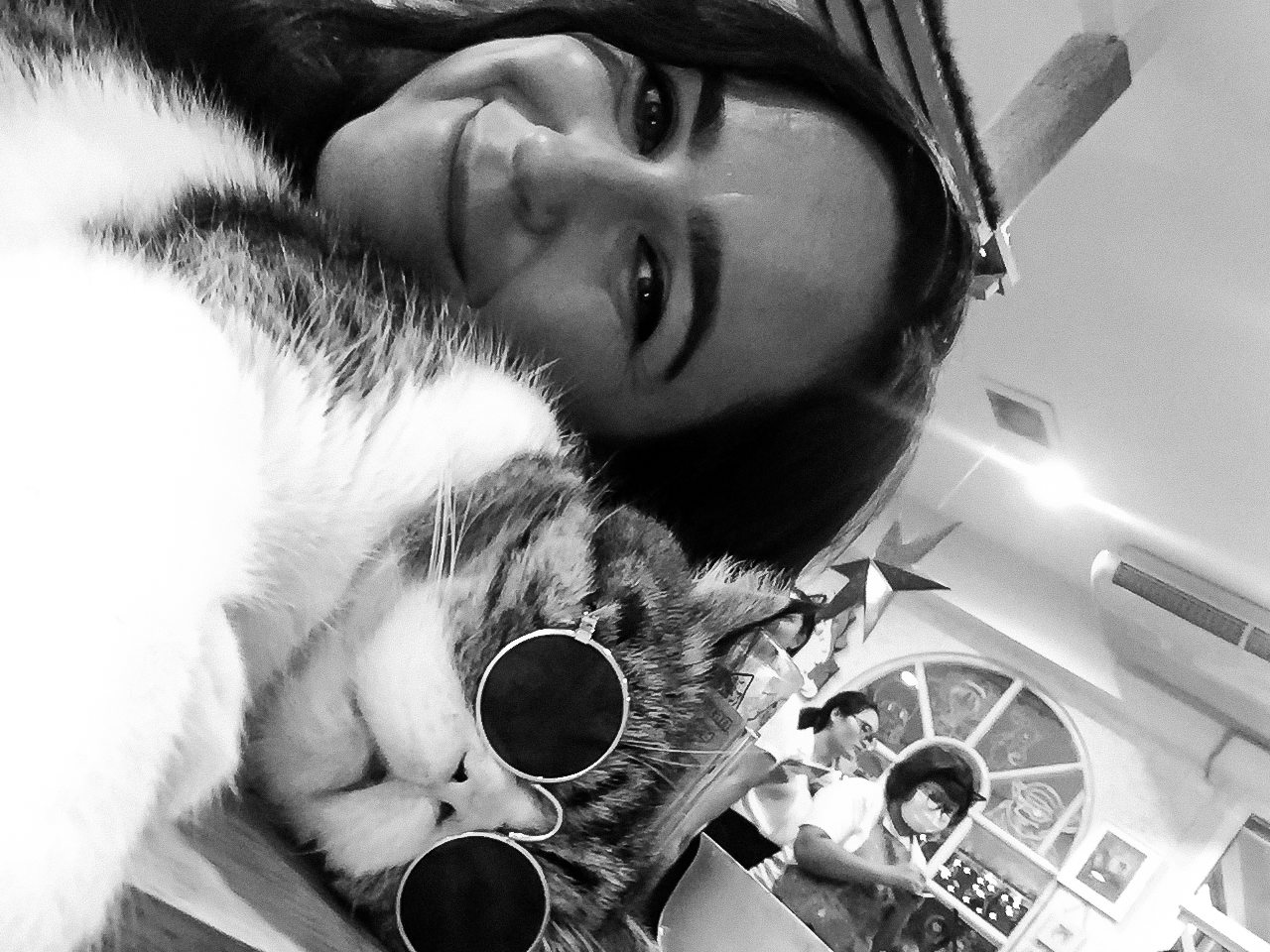 Cat selfie cat cafe