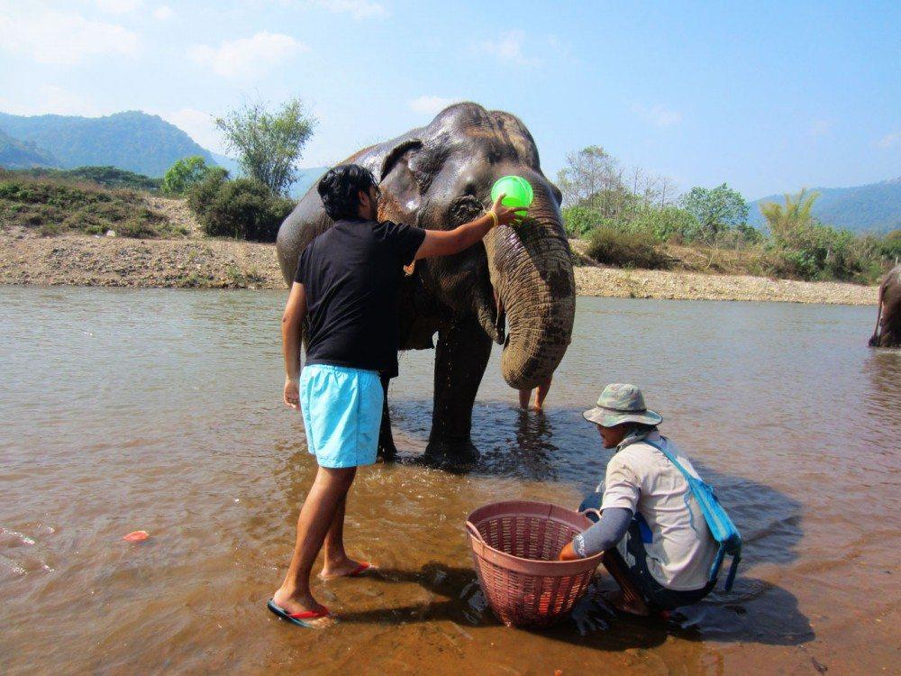 Elephant-Nature-Park-bath-the-elephants
