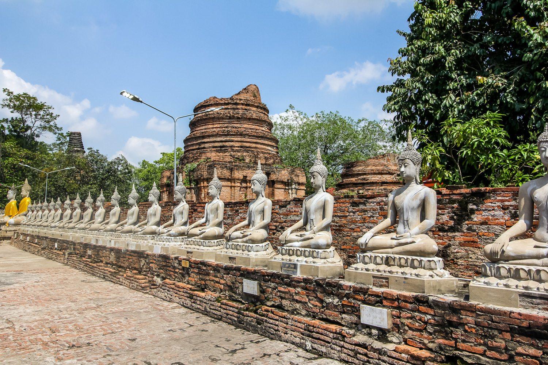 Wat Yai Chai Mongkhon Row of Buddha Statues