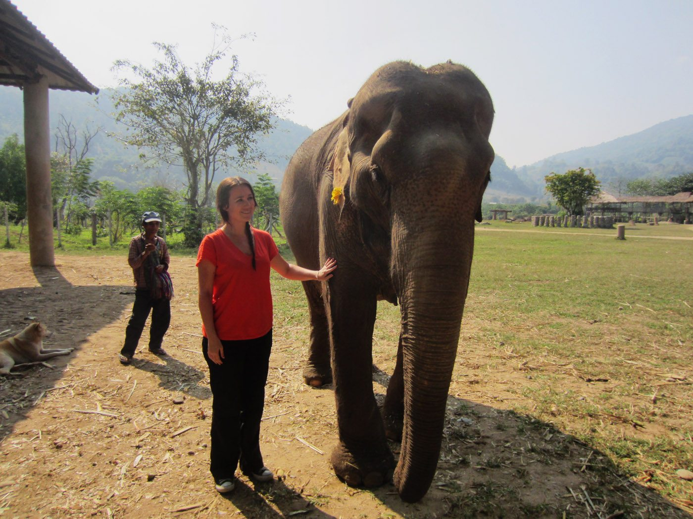 Do not ride elephants
